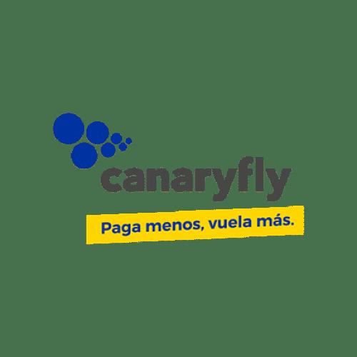 Canary-fly